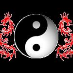 chi kung palermo
