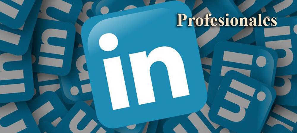 Posicionamiento en Web Inicio Profesionales