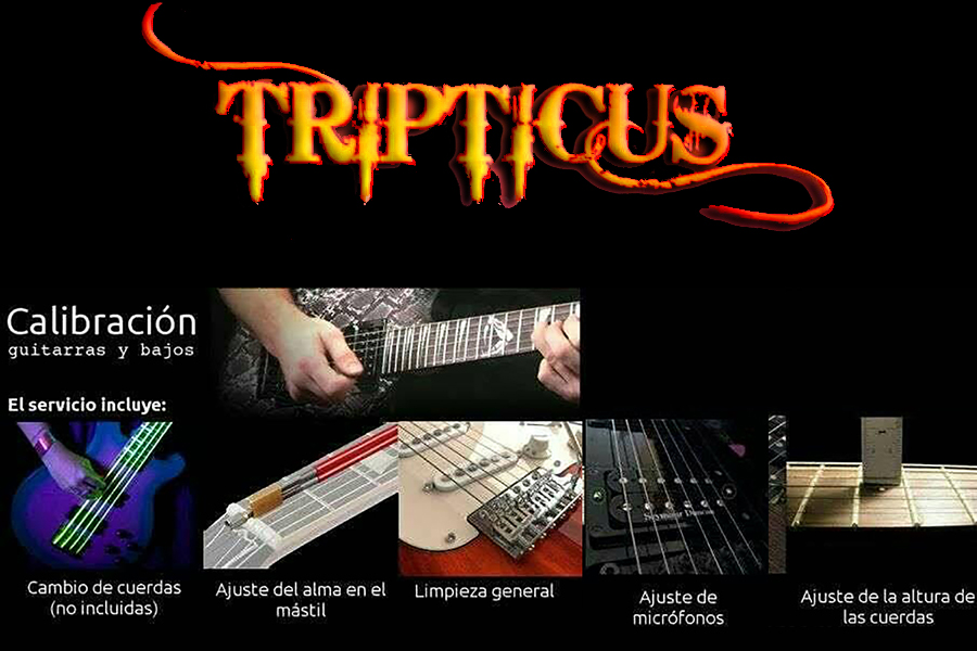 Instrumentos Musicales en Córdoba Tripticu´s. Posicionamiento en Web.