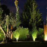 Mantenimiento de Jardines en Villa Allende Córdoba Zona Norte